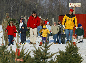 join us for a fun day on the farm students will take a wagon ride through fields of towering evergreens fall maples and the surrounding woodlands - Christmas Tree Farms In Ohio
